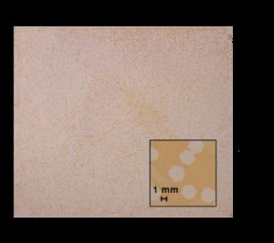 300 mm Cu Foil