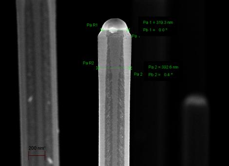 Silicon Nanowires SEM - 100 K X
