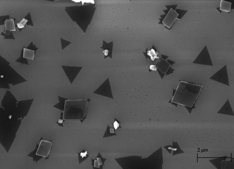 Transition Metal Dichalcogenides - 20 K X